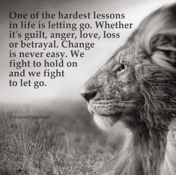 Lion photo saying One of life's hardest lessons it letting go, guilt, anger, lover, betralyal etall ...